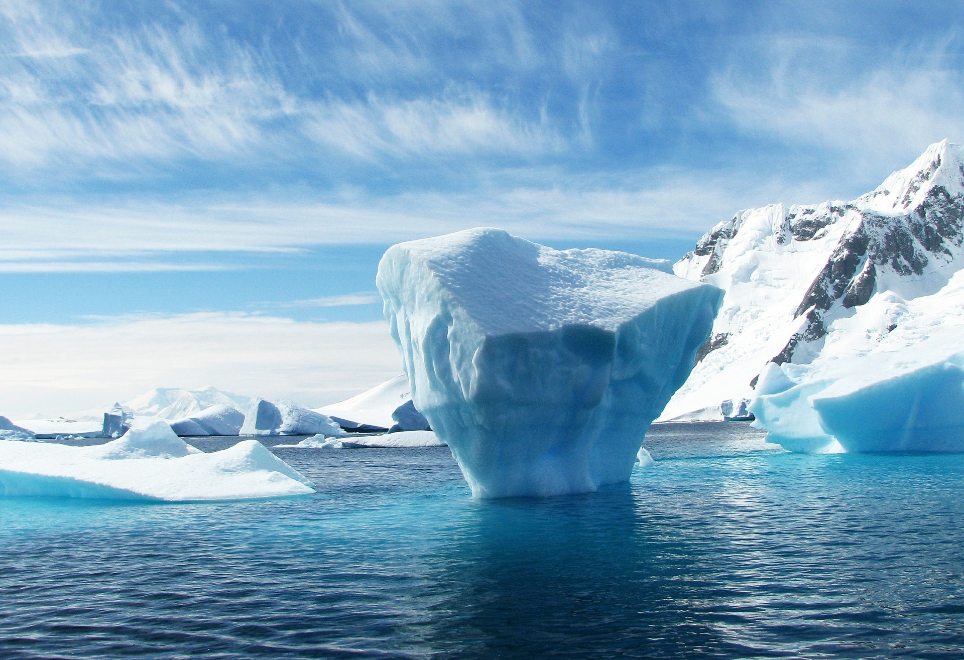 The Art of Icebergs