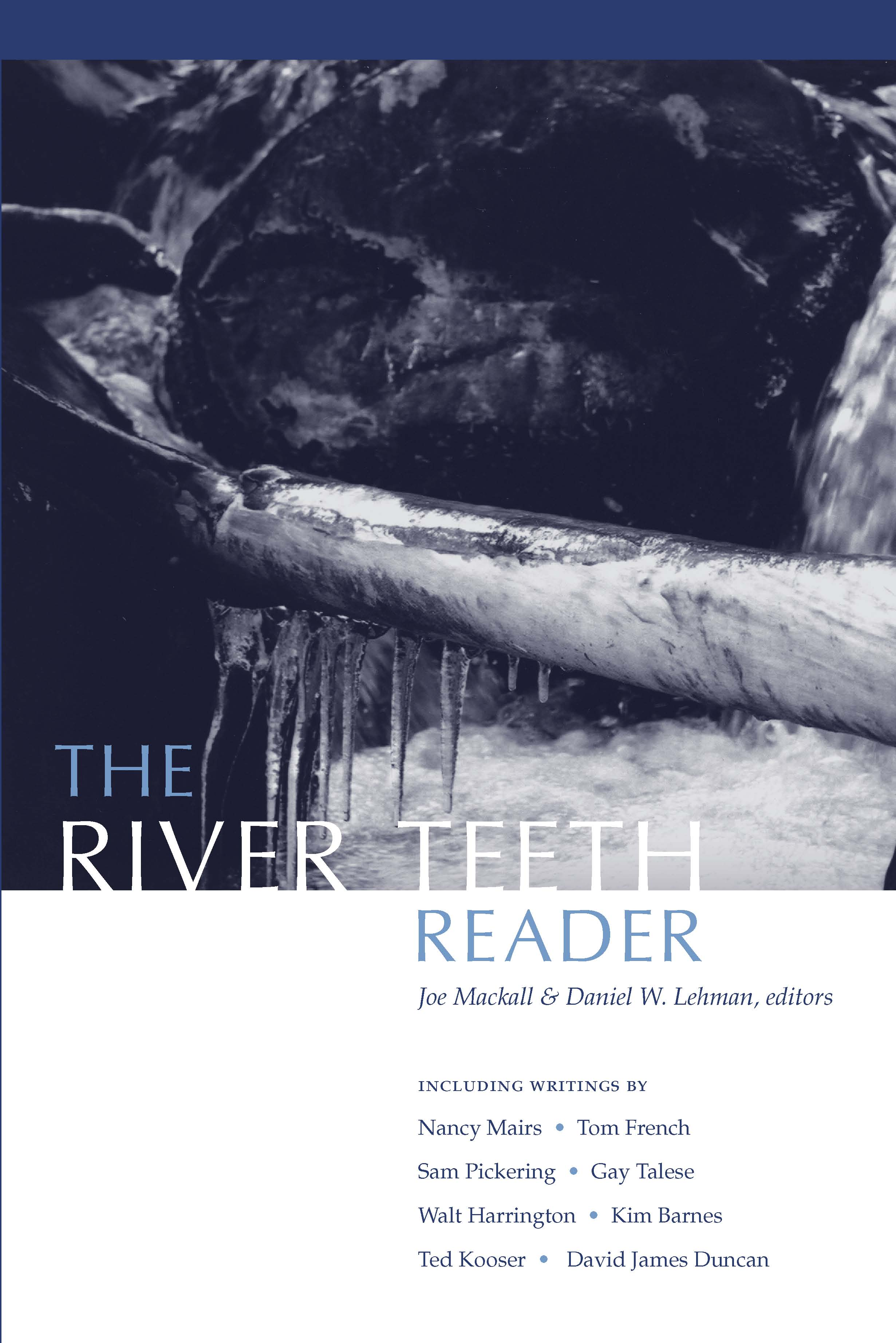 Volume 10 - The River Teeth Reader