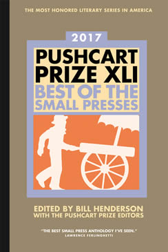 Pushcart Nominations for 2016